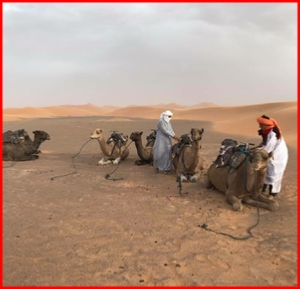 7,8,9,10,14 day tour from Casablanca to Chefcahouen and Sahara desert