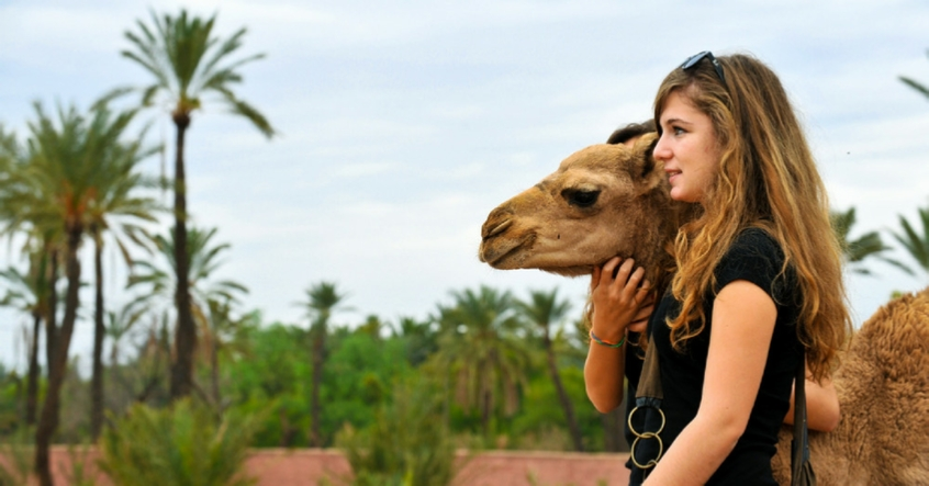 Top Marrakech Excursions , Best Tours departure Marrakech, Scooter trips, Activities with local Guide